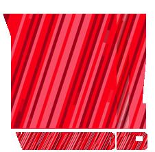 vivavideo_logo_009